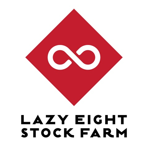 Lazy-Eight-stacked-vertical